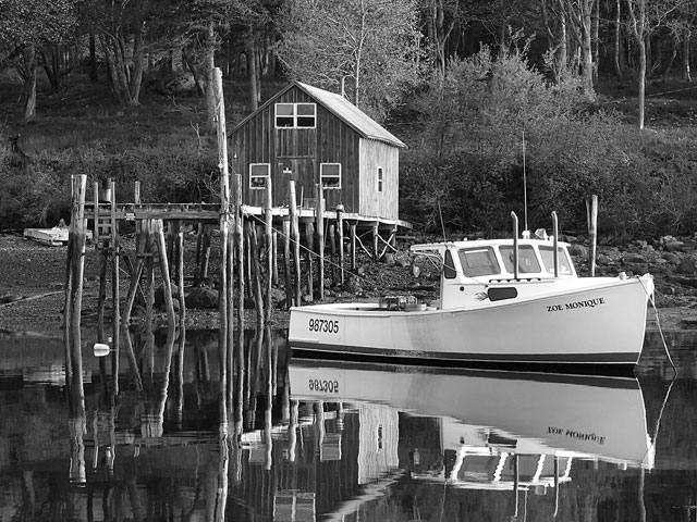 Image Biechele Head of the Harbor BW