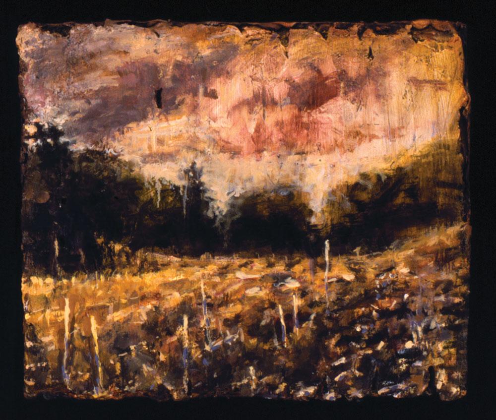 Image Petri Flint - Open Field