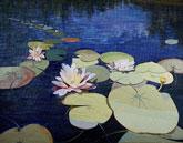 Image Len Haug-Water Lilies at Wachusett Meadow