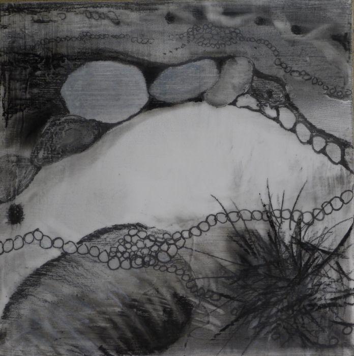 Image Holtje Ambiogenisis