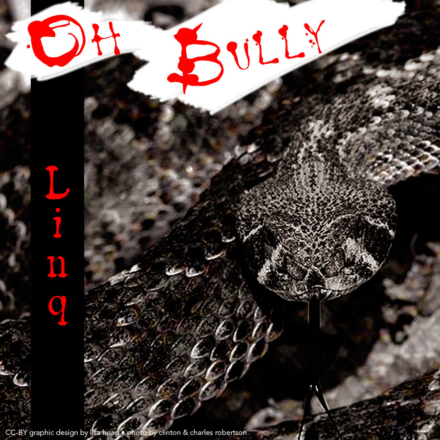 Image Linq-Oh Bully CD Cover