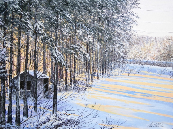 Image Lori MacDonald-The Old Shed in New Light