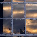 Window Reflection, Photography