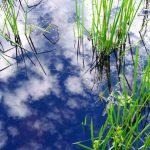Water - Sky