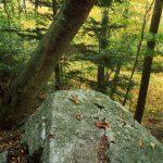 Autumn on Wachusett Mountain