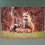 Mother Fox Kids-Rick Flematti