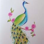Notecard Peacock-Eleanor Sweetwood
