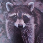 Notecard Raccoon-Maryann Mullett