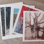 Notecard Woods & Trees-Joe Smith