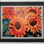 Sunflowers Photo-Mark Lore