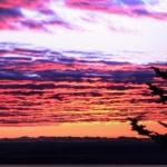 Sunrise Whiteface Mtn-Matt Giordano